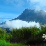 Kinabalu Park_Malaysia